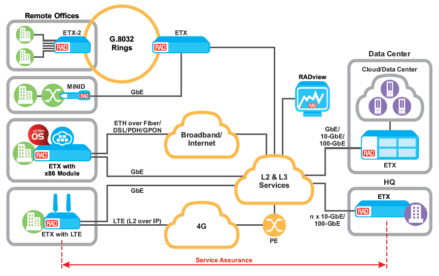 Carrier Ethernet and IP VPNs