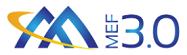MEF 3.0