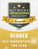 NFV Innovation of the Year Award 2014