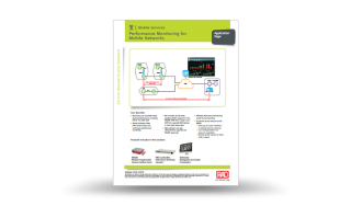 Performance Monitoring for Mobile Networks