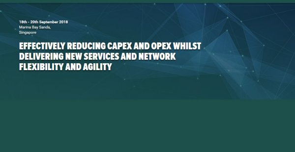 Network Virtualization and SDN